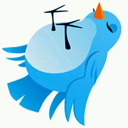 twitter follow friday cos'è