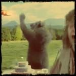 tippex orso e cacciatore